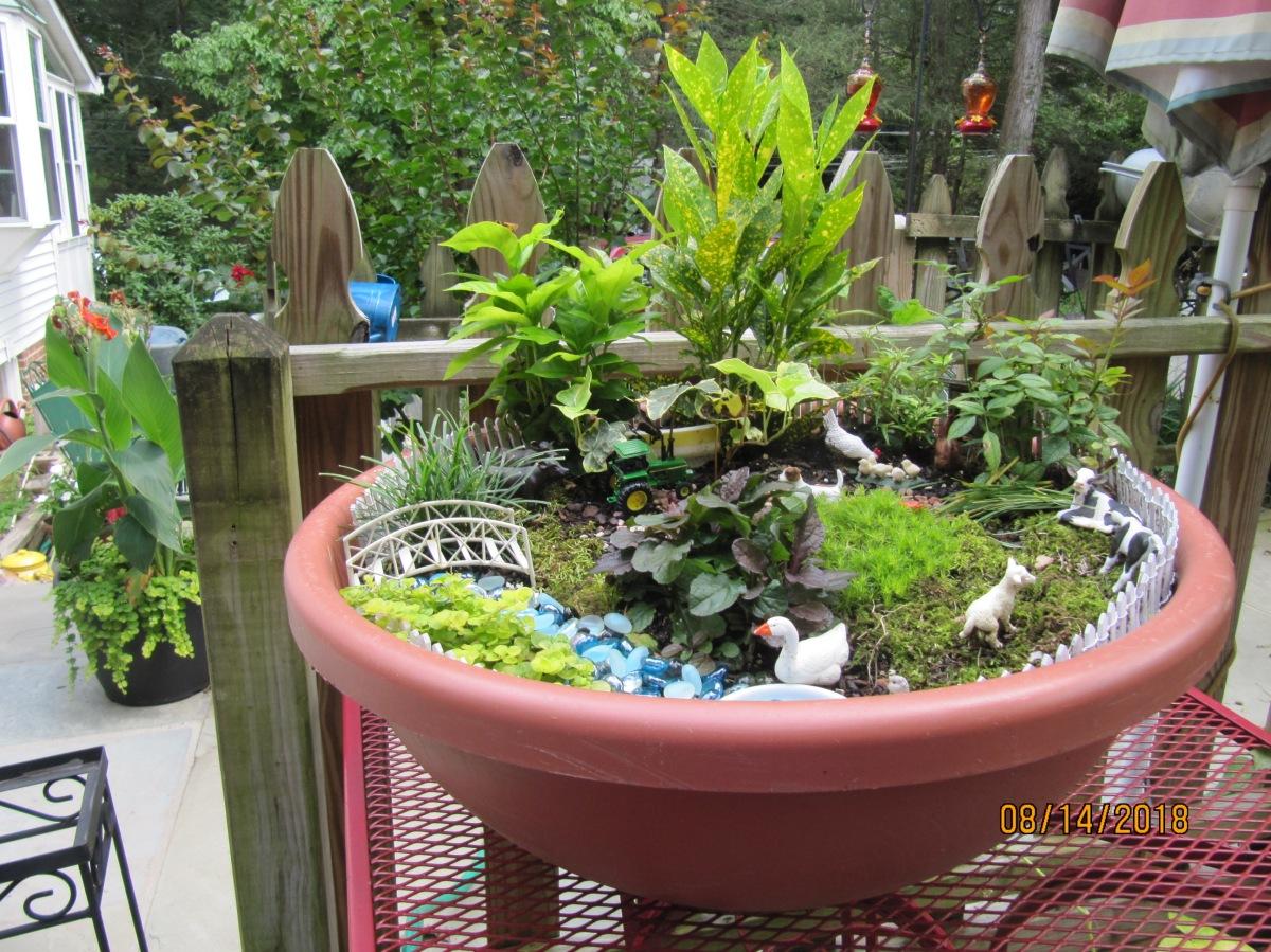 Carol's miniature garden farm