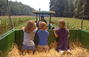 Children on the farm
