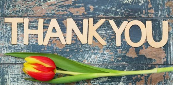Thank You with Tulip